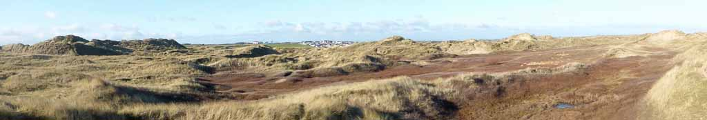 The 'brown' middle slack at Aberffraw Dunes in winter.