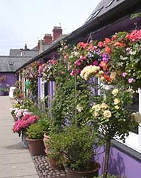 The Market Square in Beaumaris on 7 July 2004. Photo: © D Perkins.