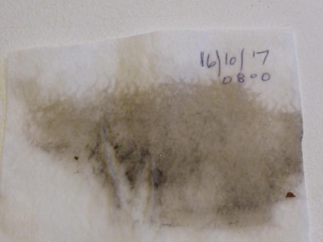 Sample of dust collected in Llansadwrn from clean surface at 0800 GMT.